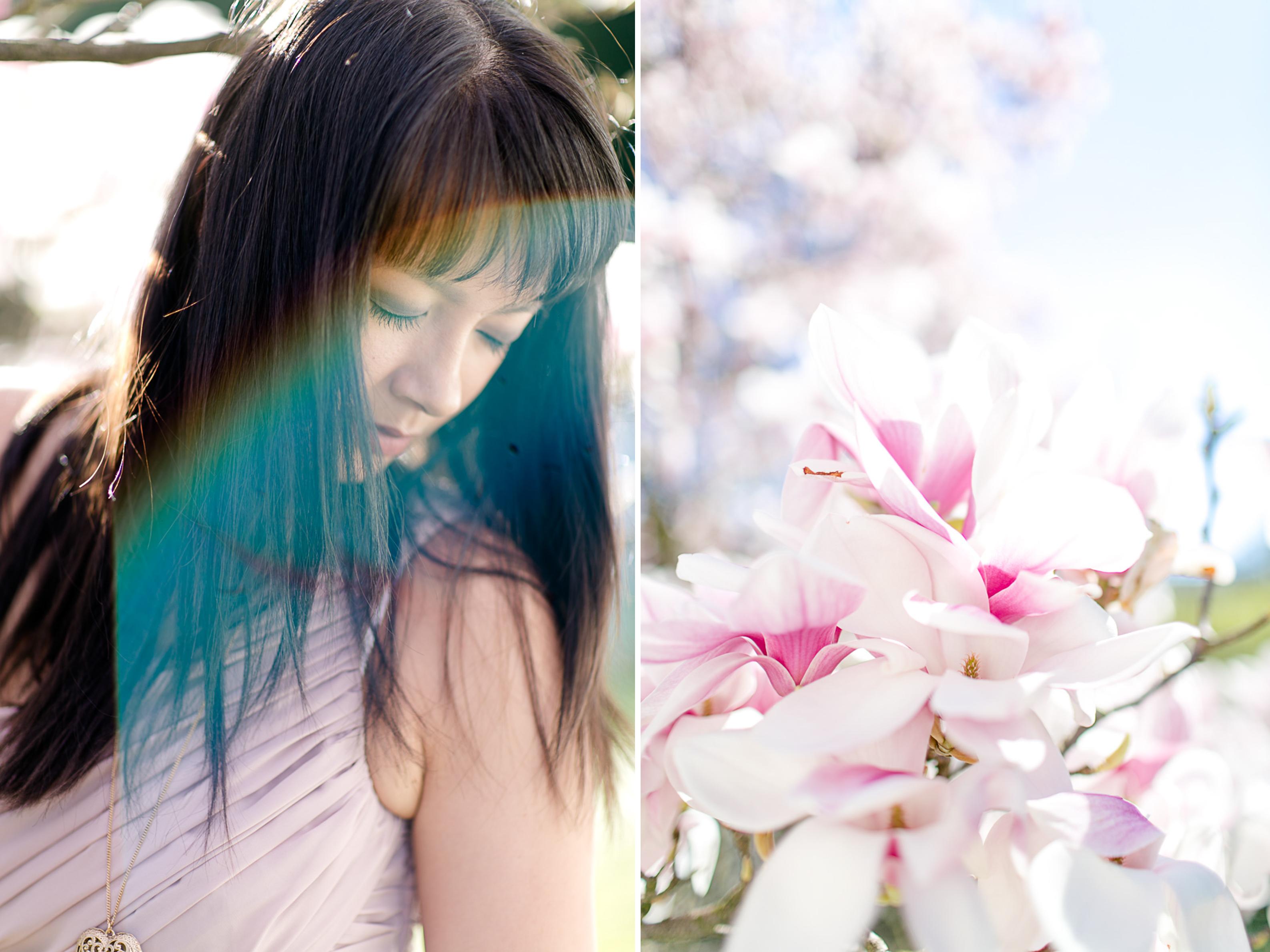 magnolia27