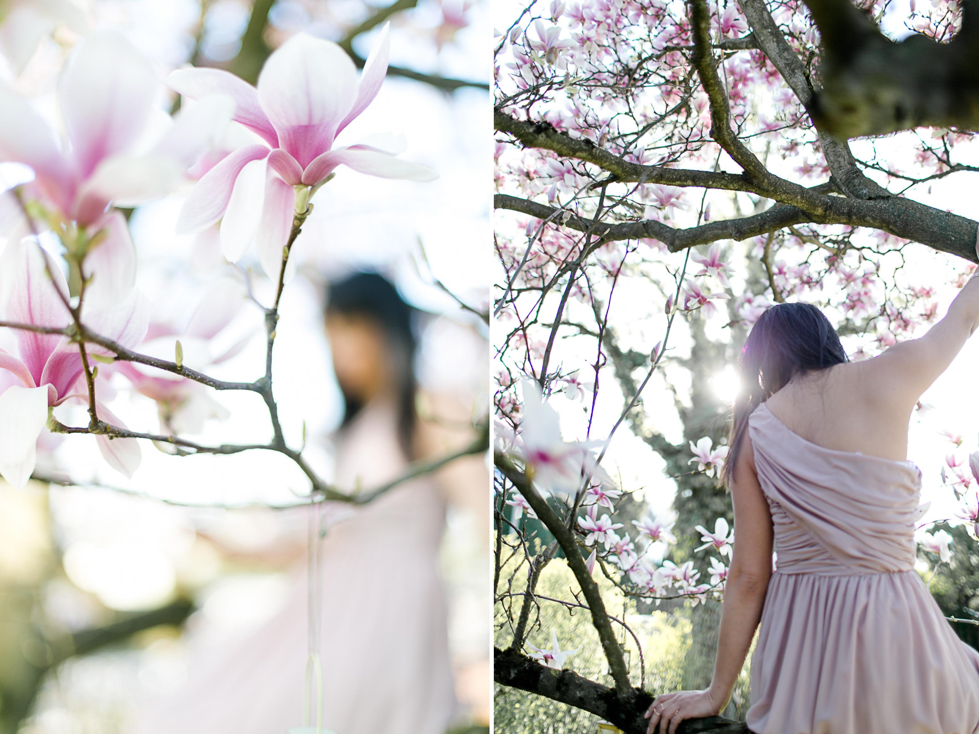 magnolia35