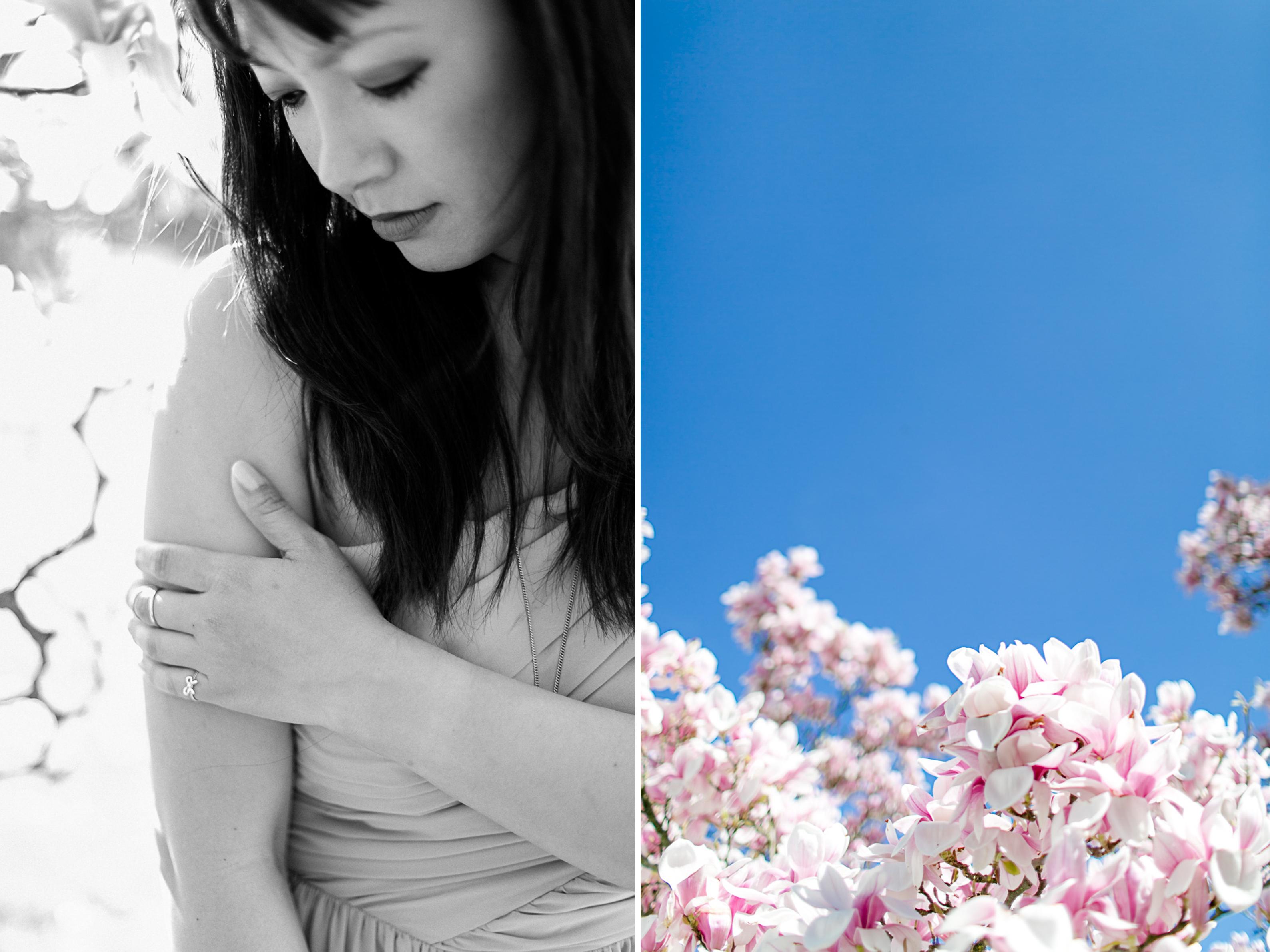 magnolia37