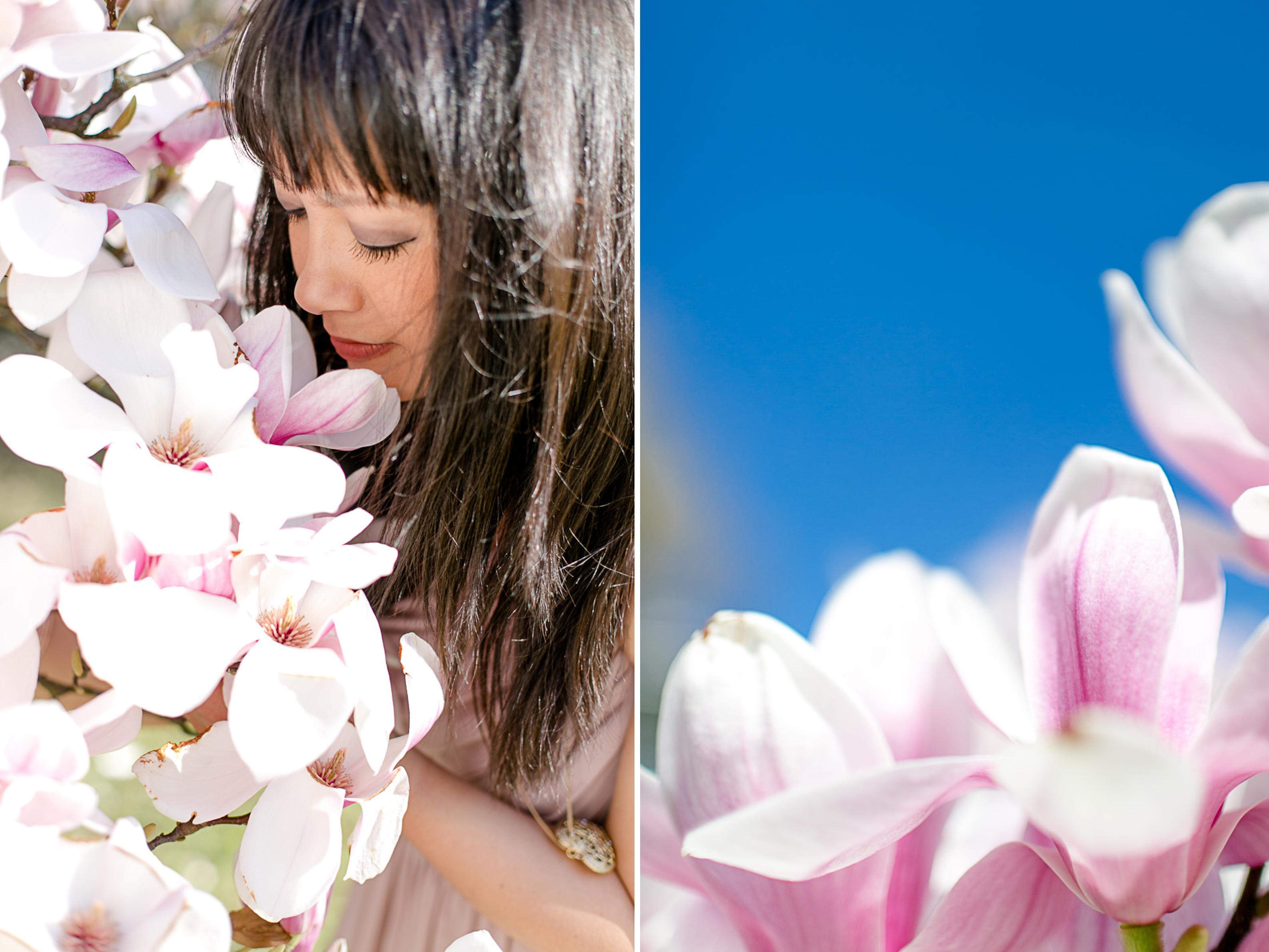 magnolia40