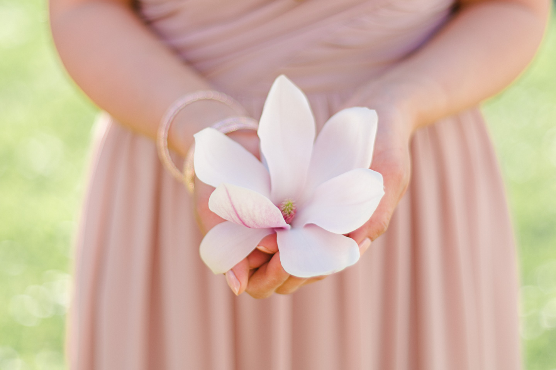 magnolia46