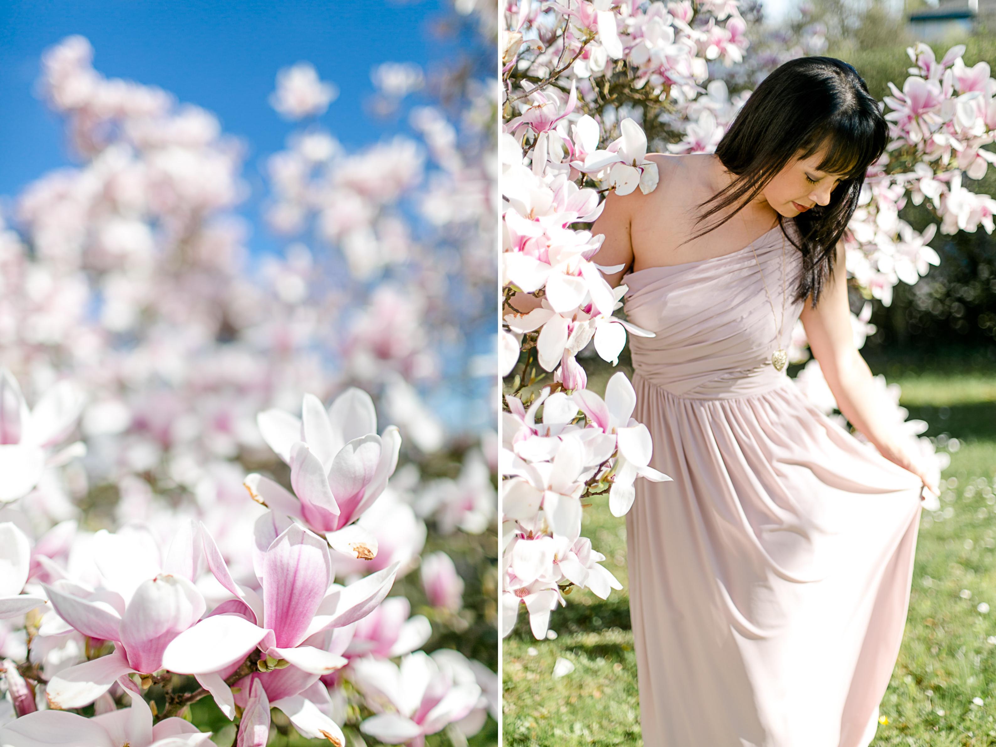 magnolia47
