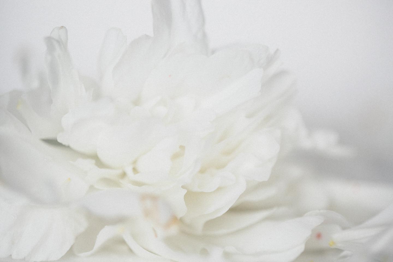 lea_bridal-36